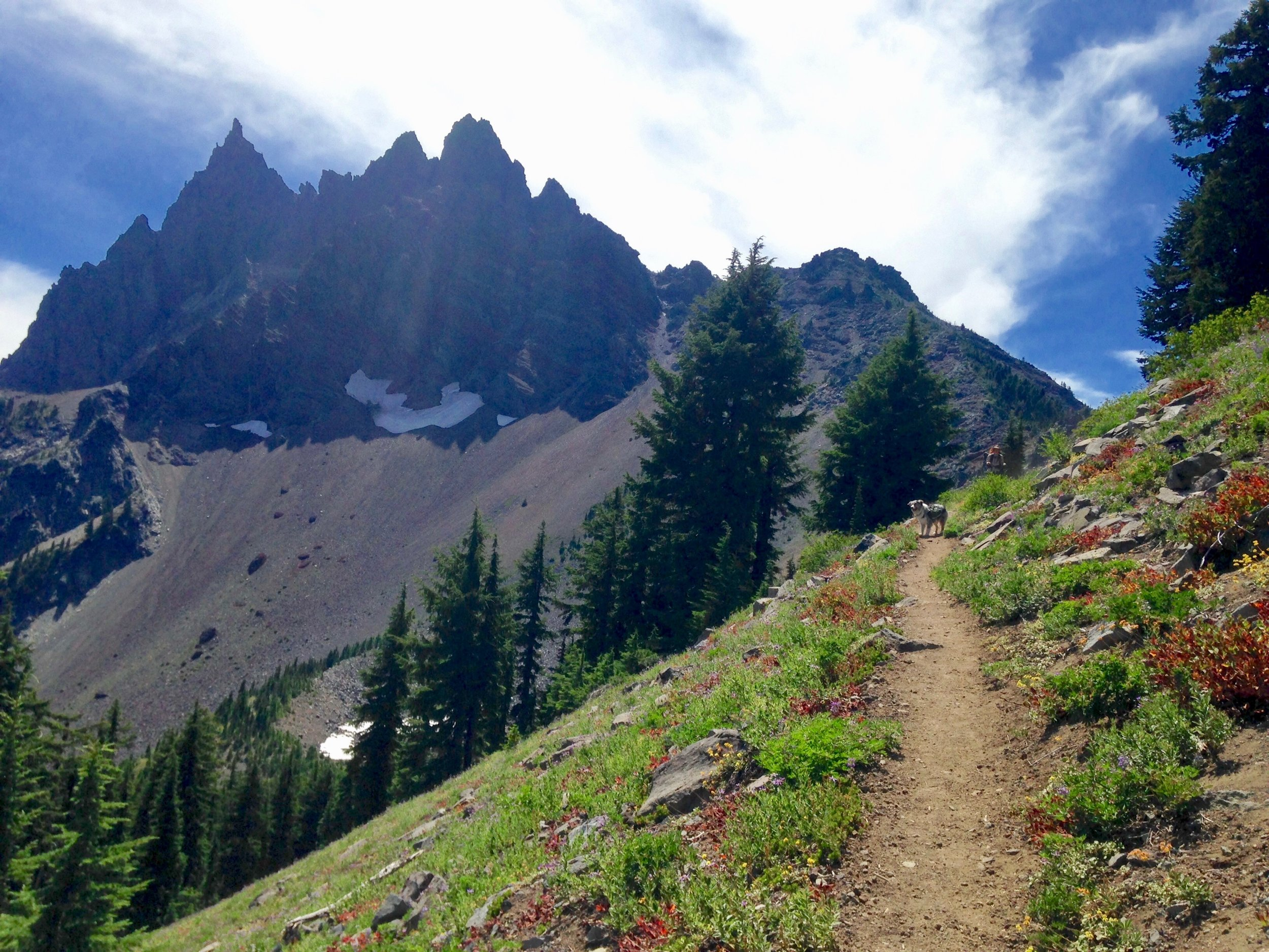 Three Fingered Jack - Deschutes National Forest, OR