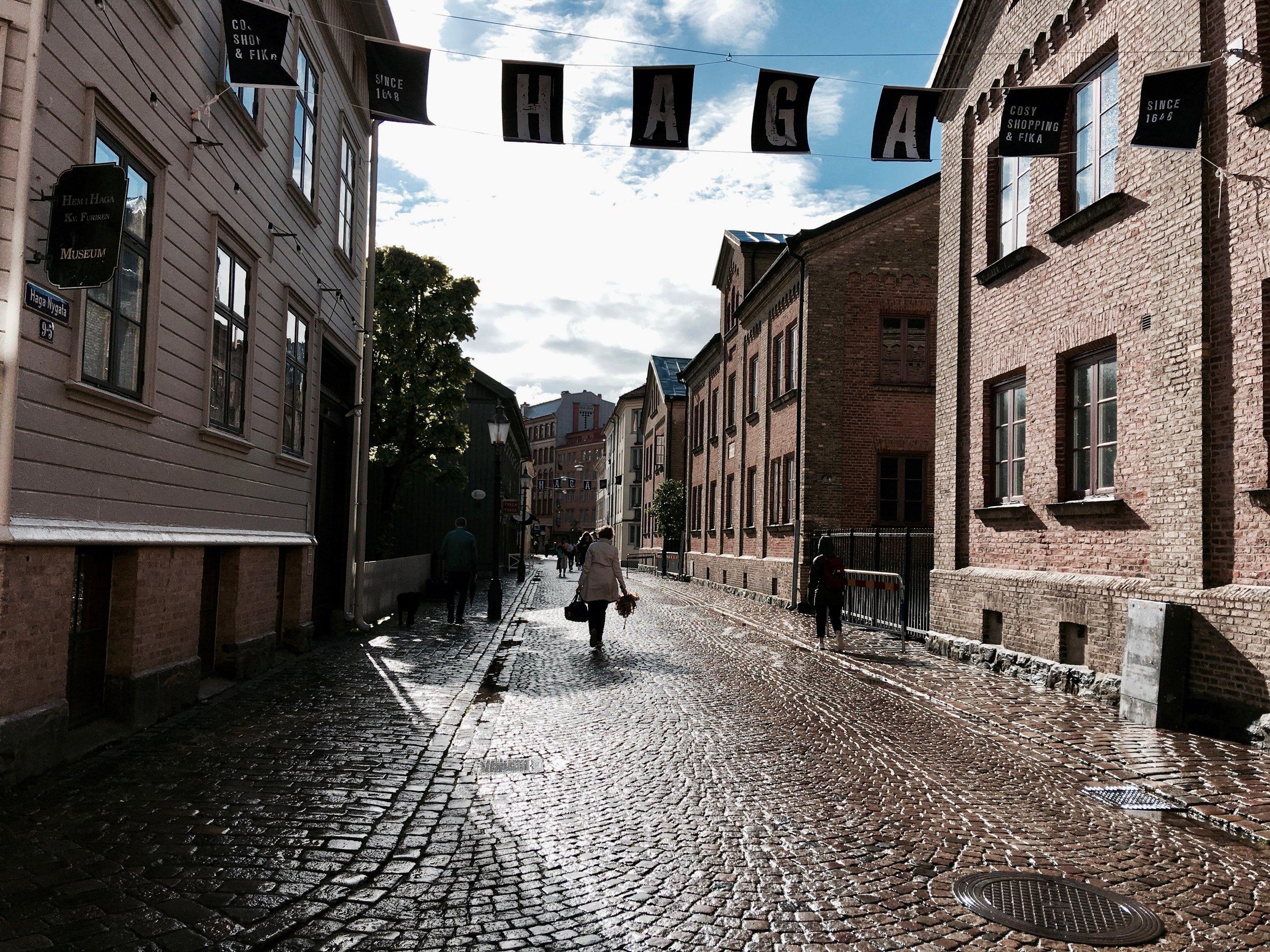 Haga Village- Gothenburg, Sweden