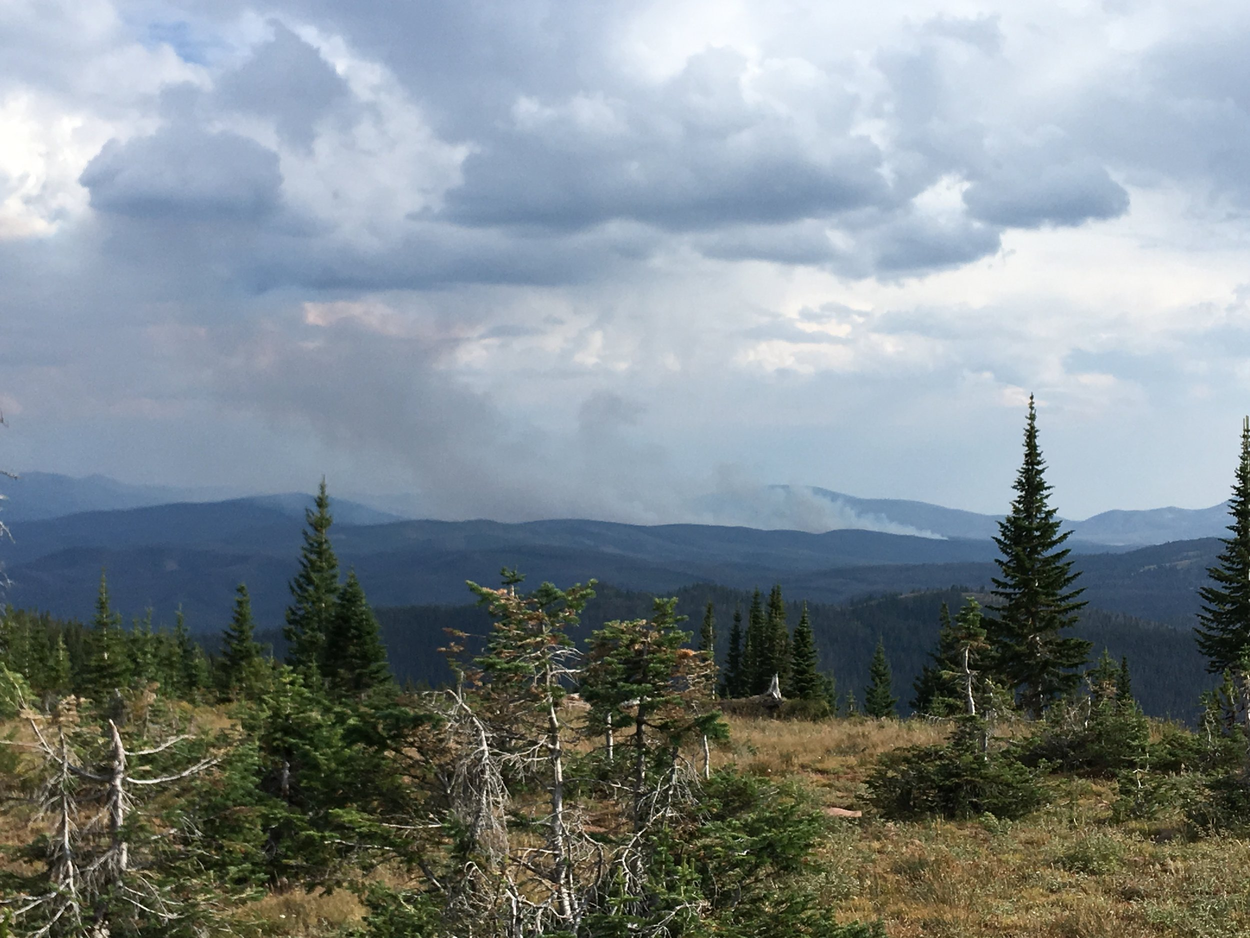Medicine-Bow National Forest, WY