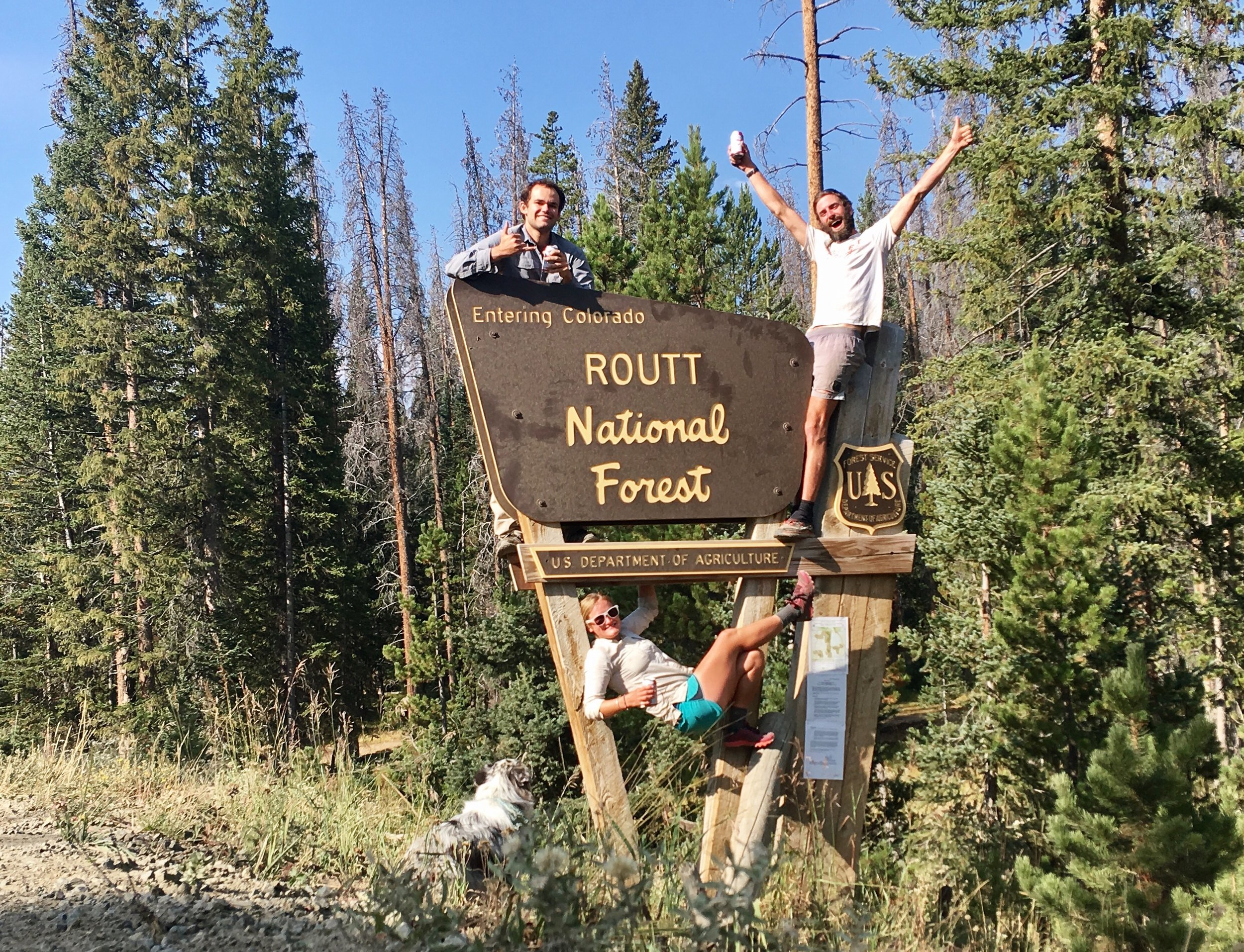 Routt National Forest, CO