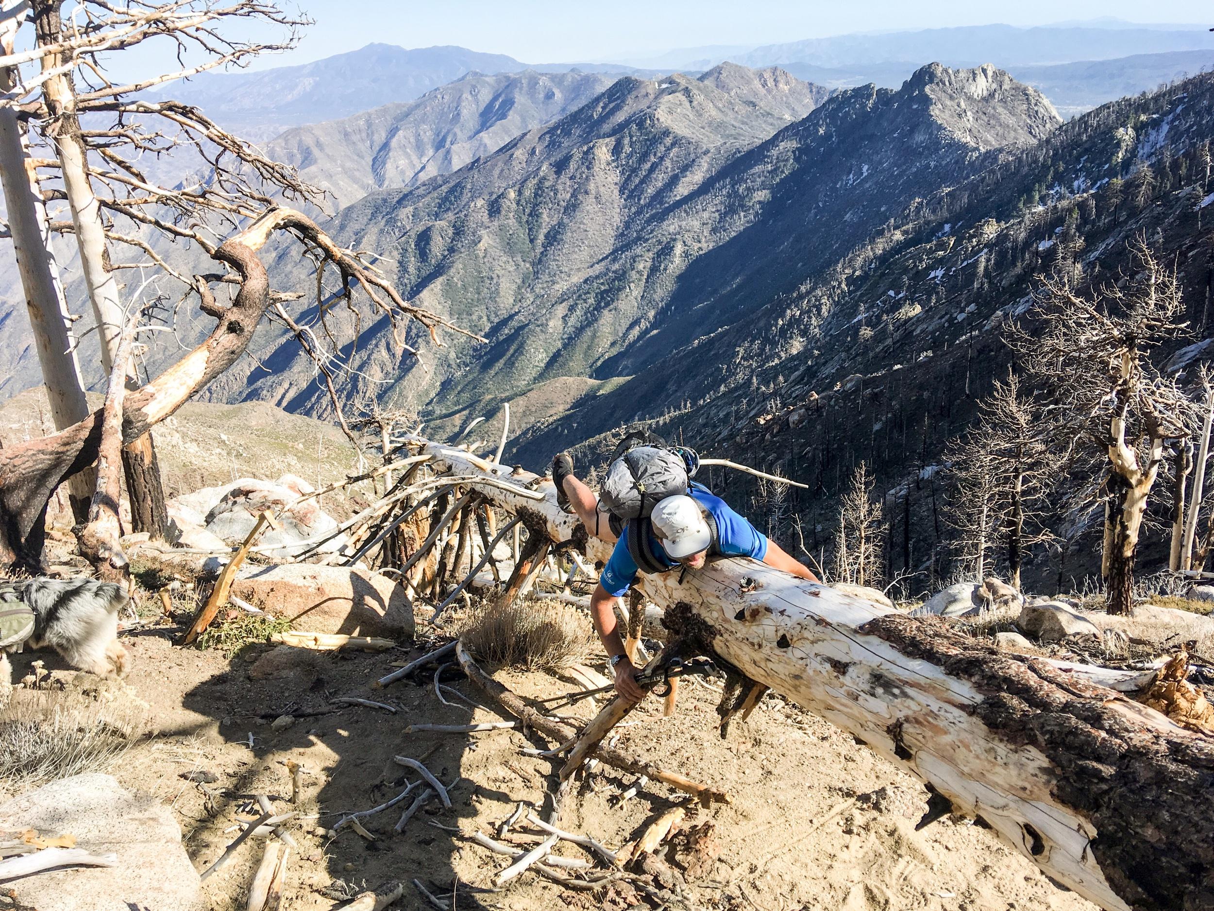 Mountain Fire Closure - San Jacinto Wilderness, CA
