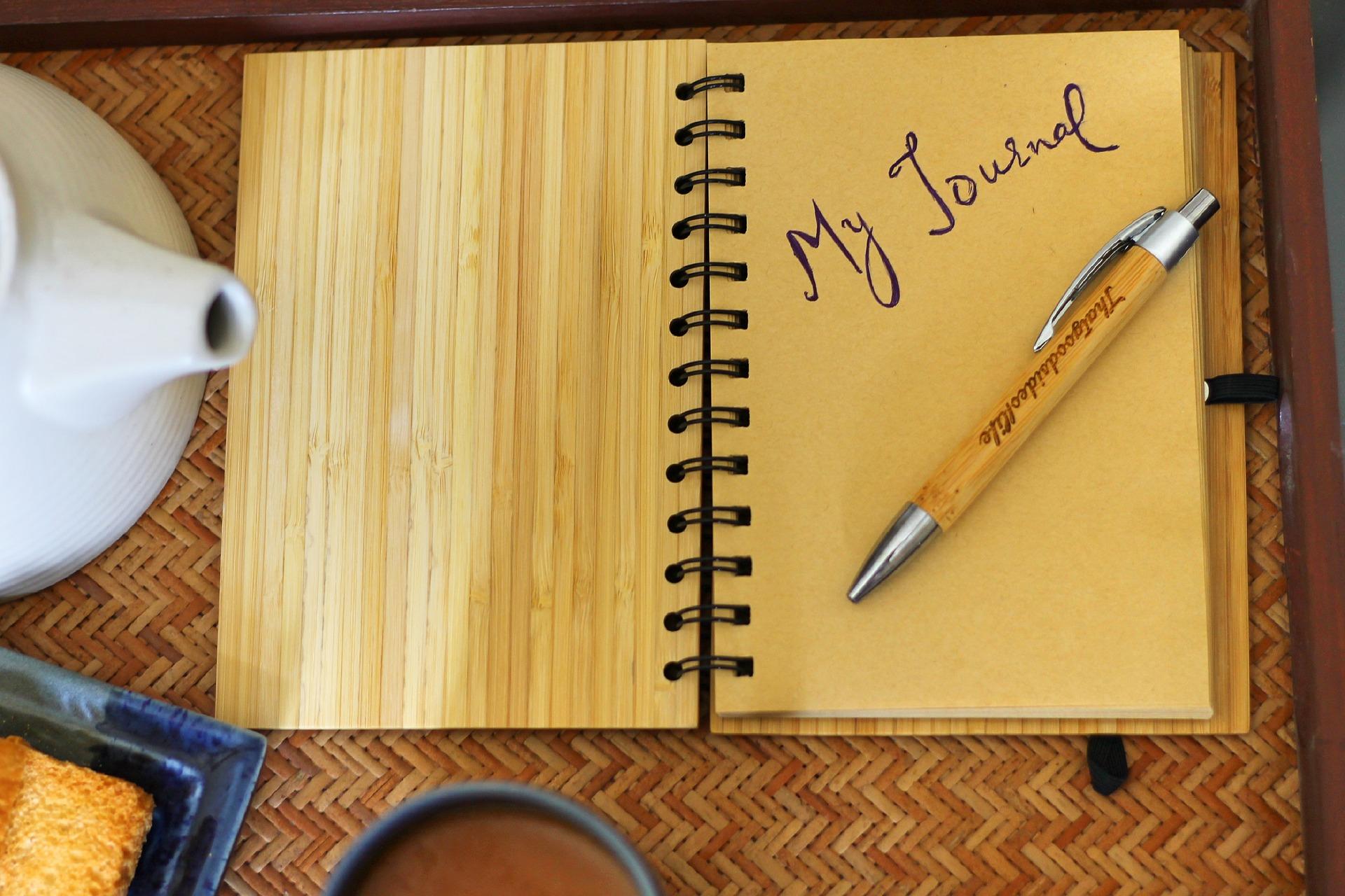 Chris's Journal -