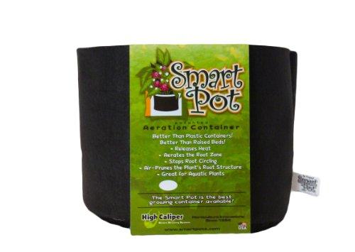 3 Gallon Smart Pot