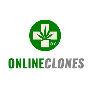 Clones for Sale — GreenBox Grown
