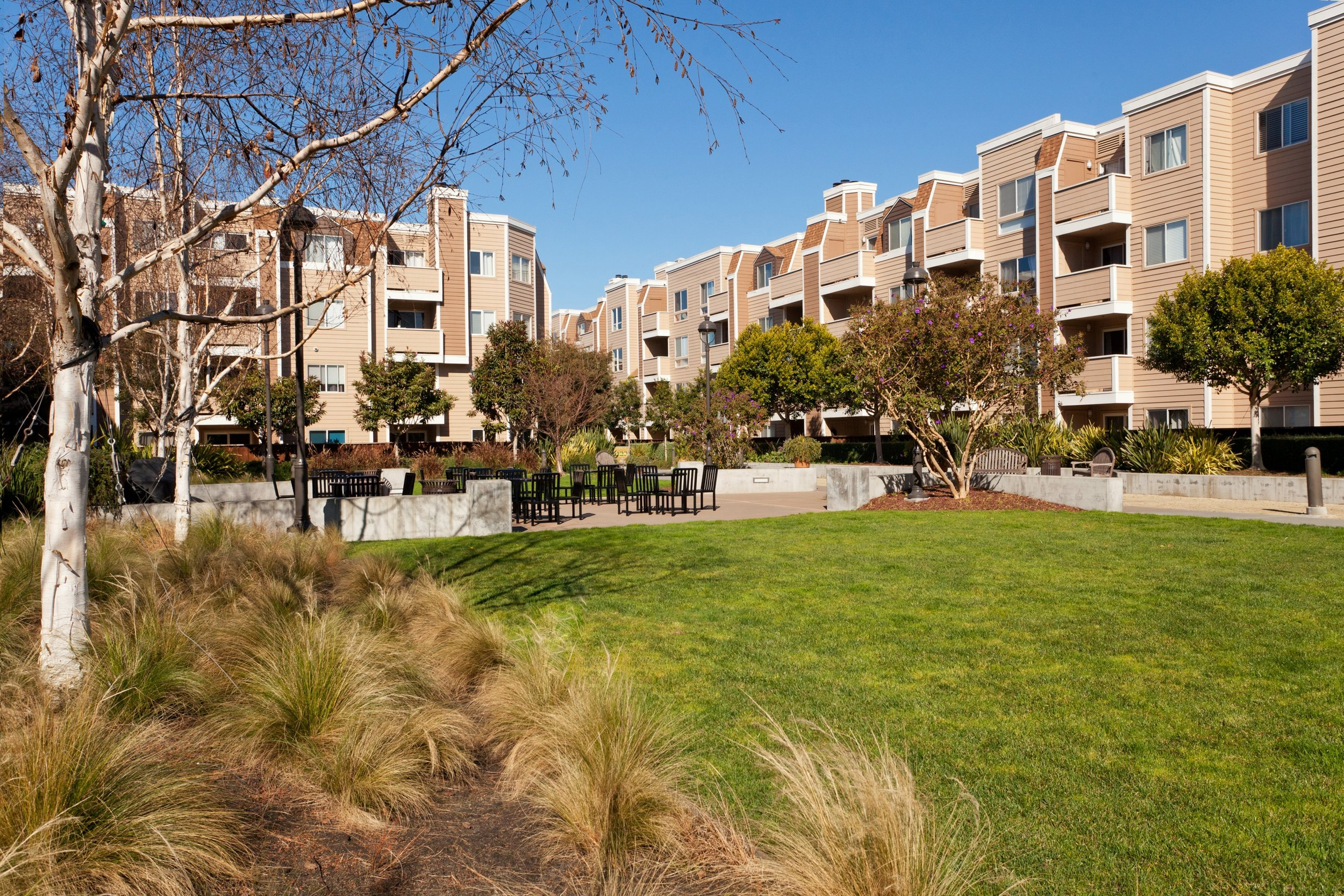 SOLD | 6400 CHRISTIE AVENUE #2412, EMERYVILLE $525,000