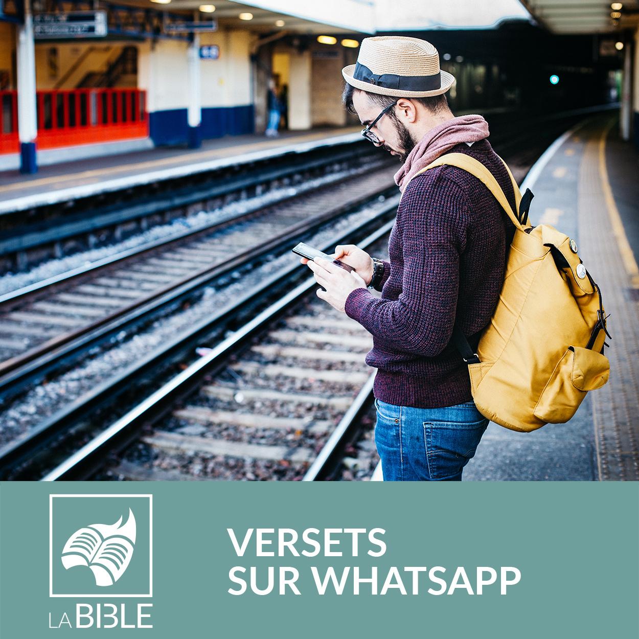 bibledigital_whatsapp.jpg