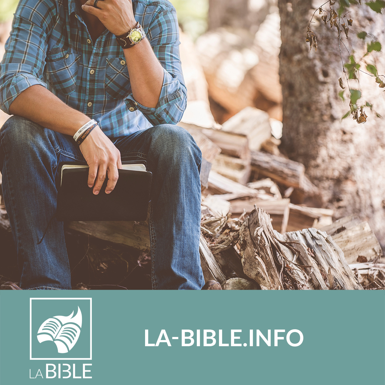 bibledigital_labible.jpg