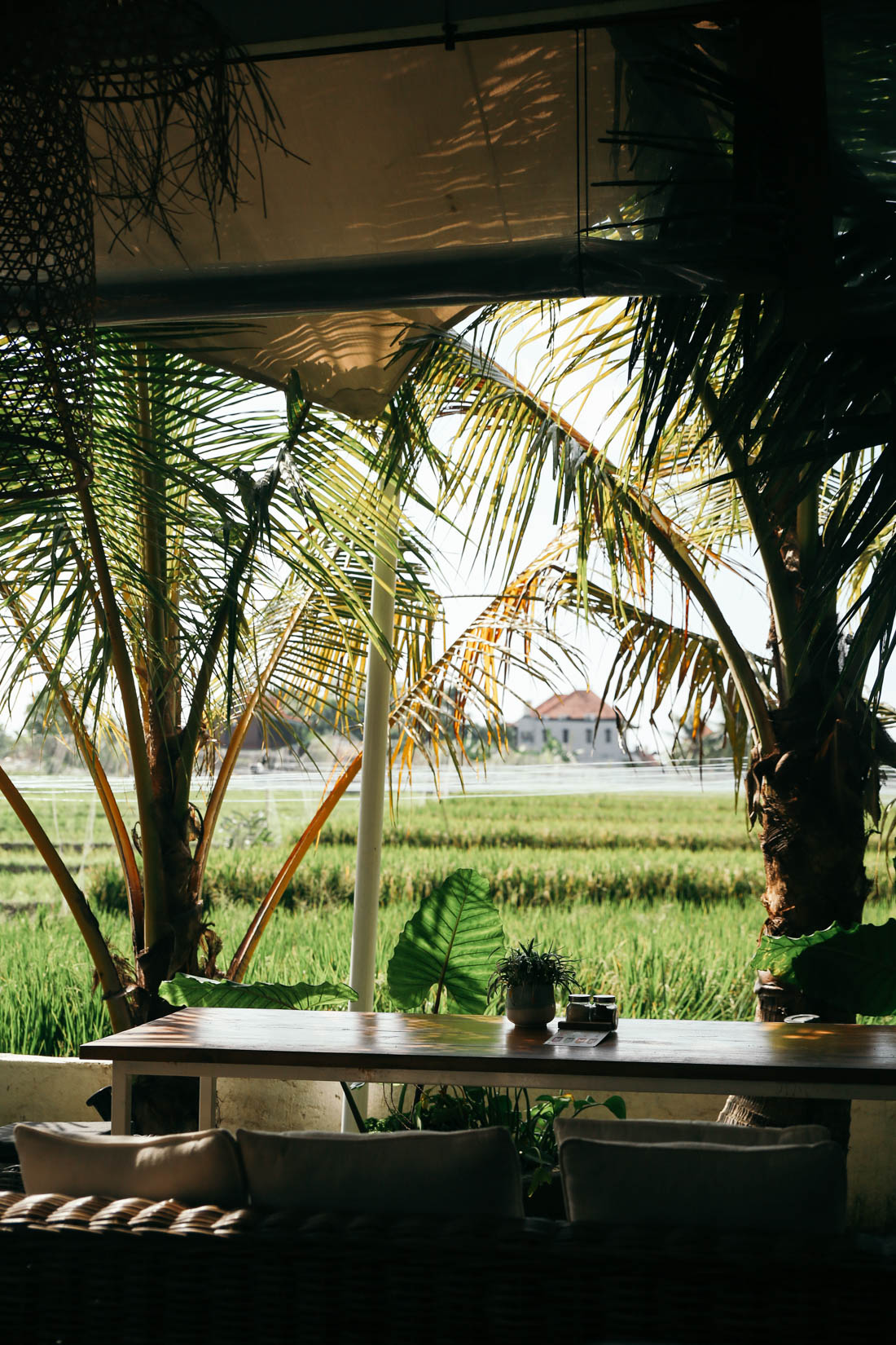 Bali (18 of 136).jpg