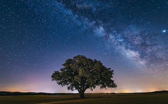Magia y efectos espaciales. P.D: Hay que mirar más al cielo (nocturno) . . #Nocturna #FotografíaNocturna #VíaLáctea #Uclés #Cuenca #España #Spain #SitiosdeEspaña #milkyway #nightphoto #nightphotograpy #igerscuenca #igersclm #igersspain #somosinstagramers #noche #estrellas #visitspain