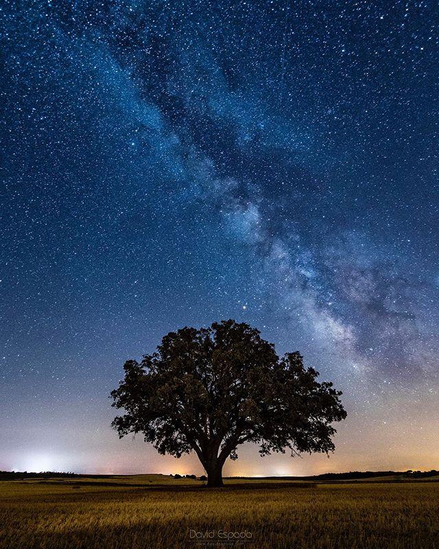 Las cosas están ligadas por lazos invisibles: no se puede arrancar una flor sin molestar una estrella. -Galileo Galilei . . #igerscuenca #igersclm #igersspain #somosinstagramers #España #Spain #SitiosdeEspaña #Uclés #Cuenca #VisitSpain #VíaLáctea #milkyway #estrellas #stars #nightphotography #fotografianocturna #night #noche