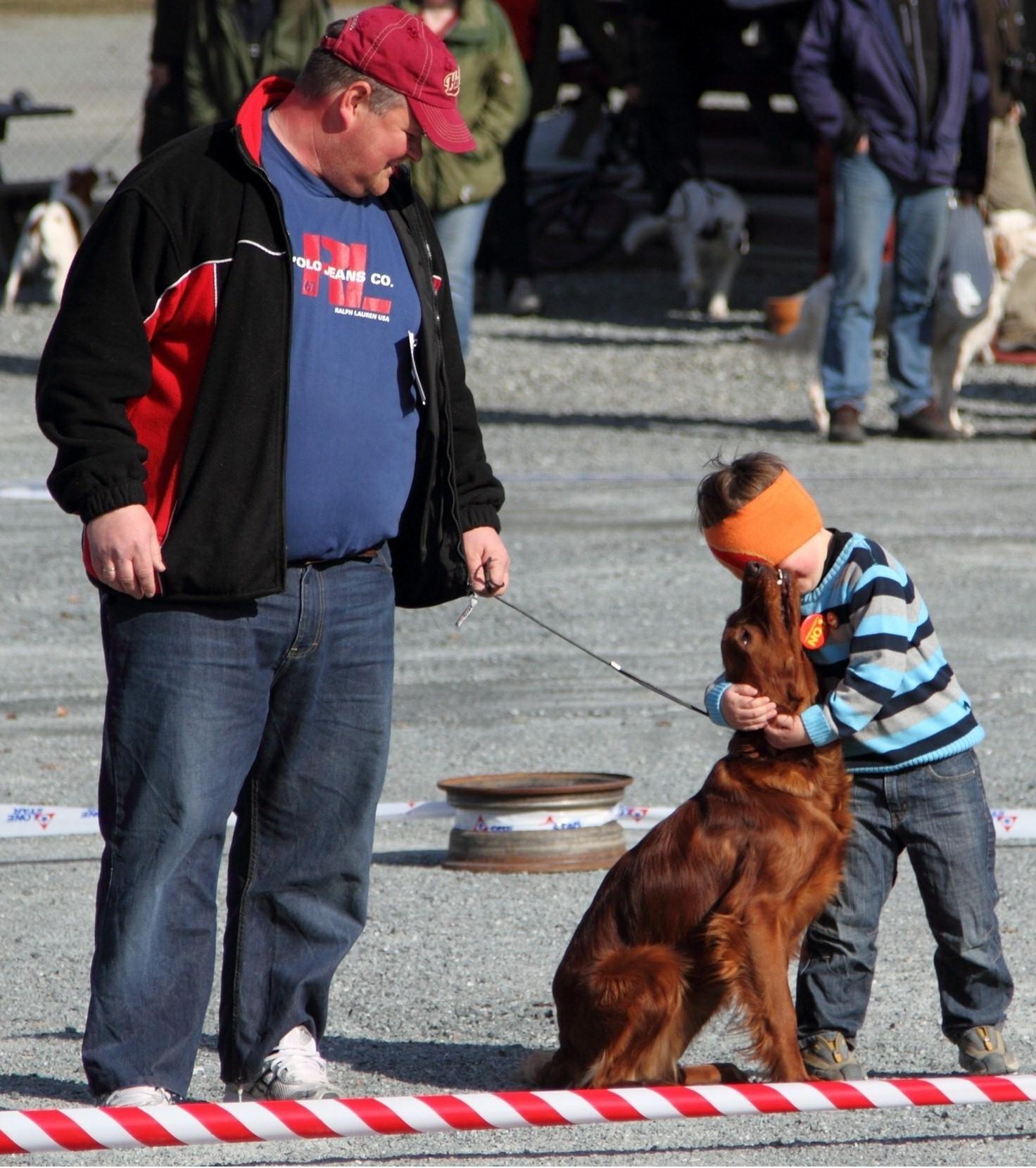 Den Irske setter er ikke bare en super god jagthund, den er også hengiven og glad for børn.