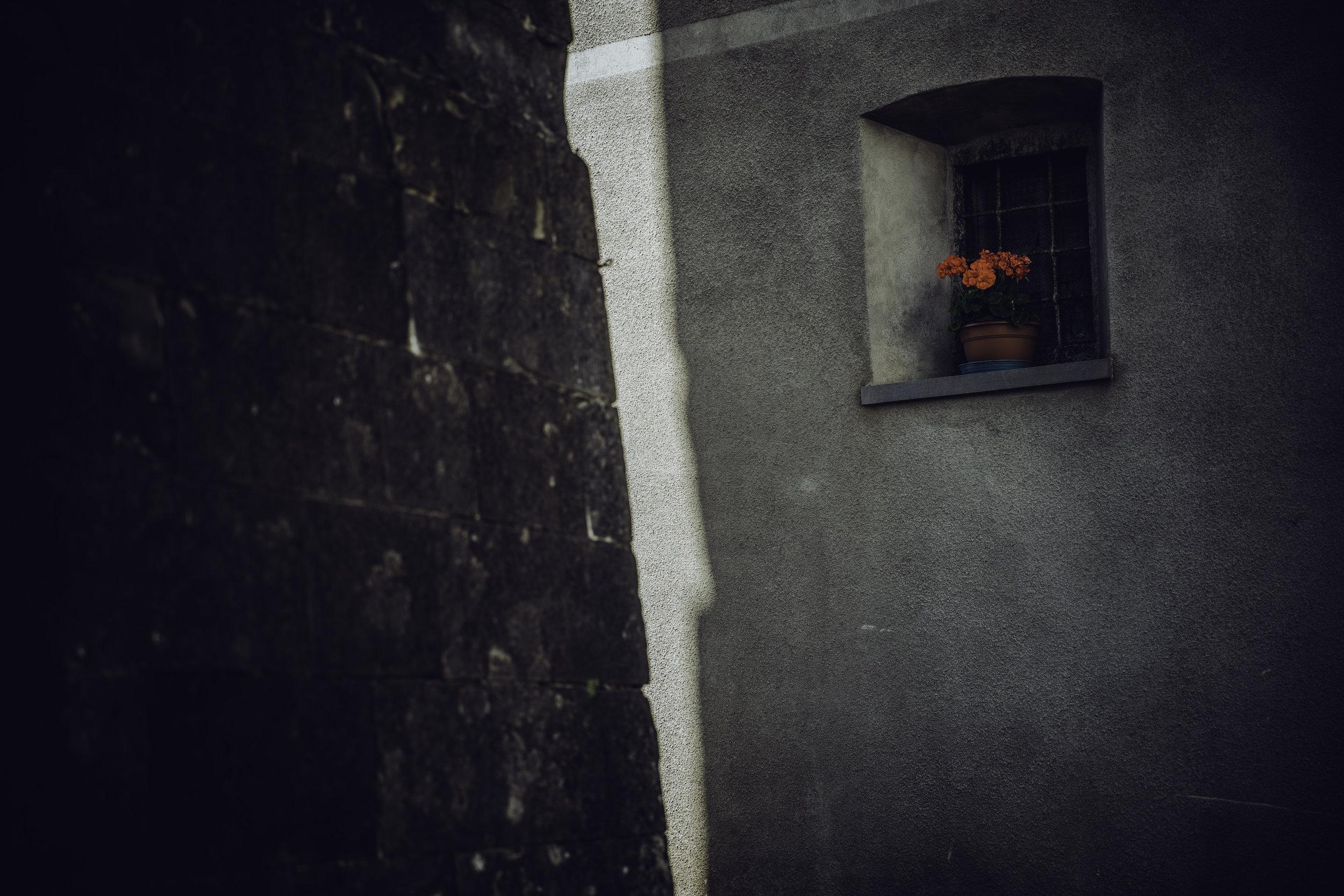 untitled-2044.jpg