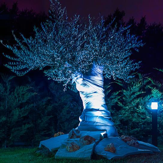 Allestimento luci nel parco - Lightning arrangements