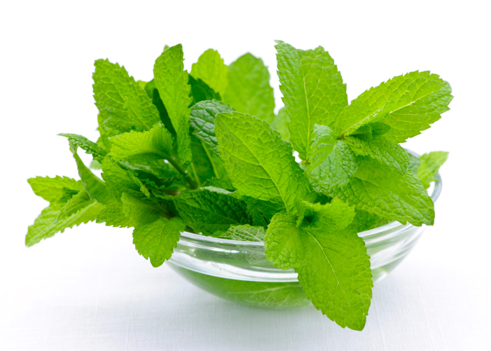 Mint helps with indigestion.