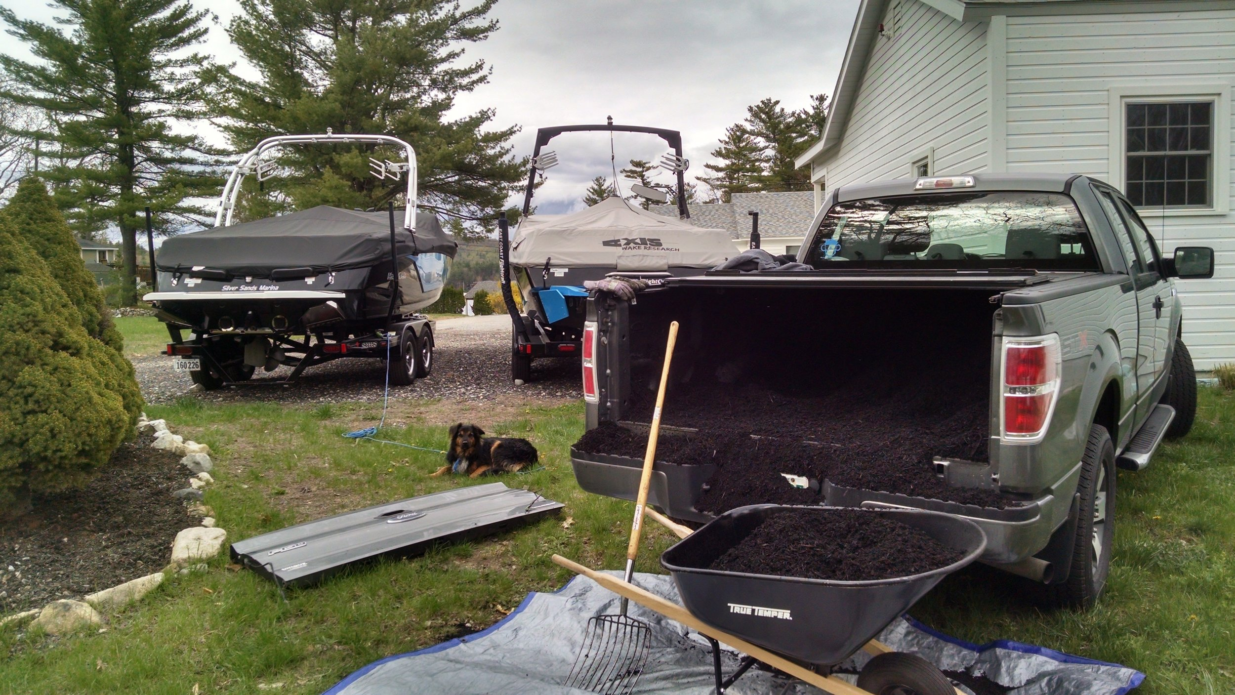 Spreading mulch with my sidekick Tuckerman...and those gorgeous boats.
