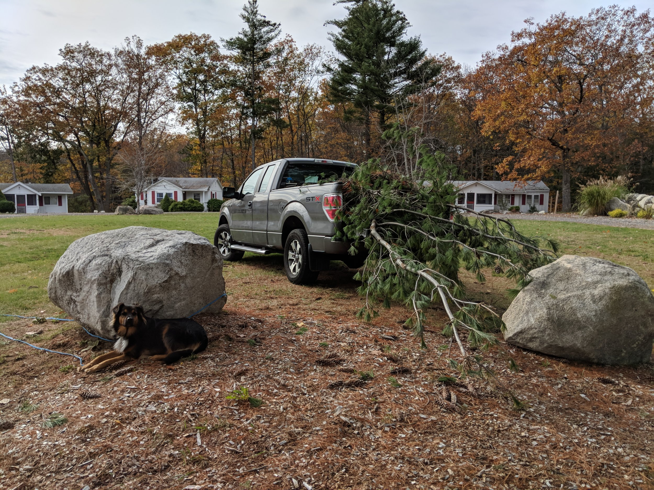 Cleaning up the summer camp property after a big storm!
