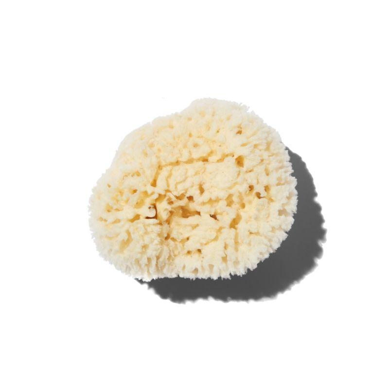Natural Sea Wool Sponge -