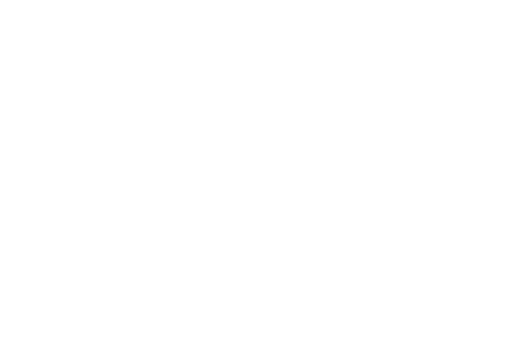 Image Out Rochester FF - WINNER:• Special Jury Prize (Documentary)October 7, 2018