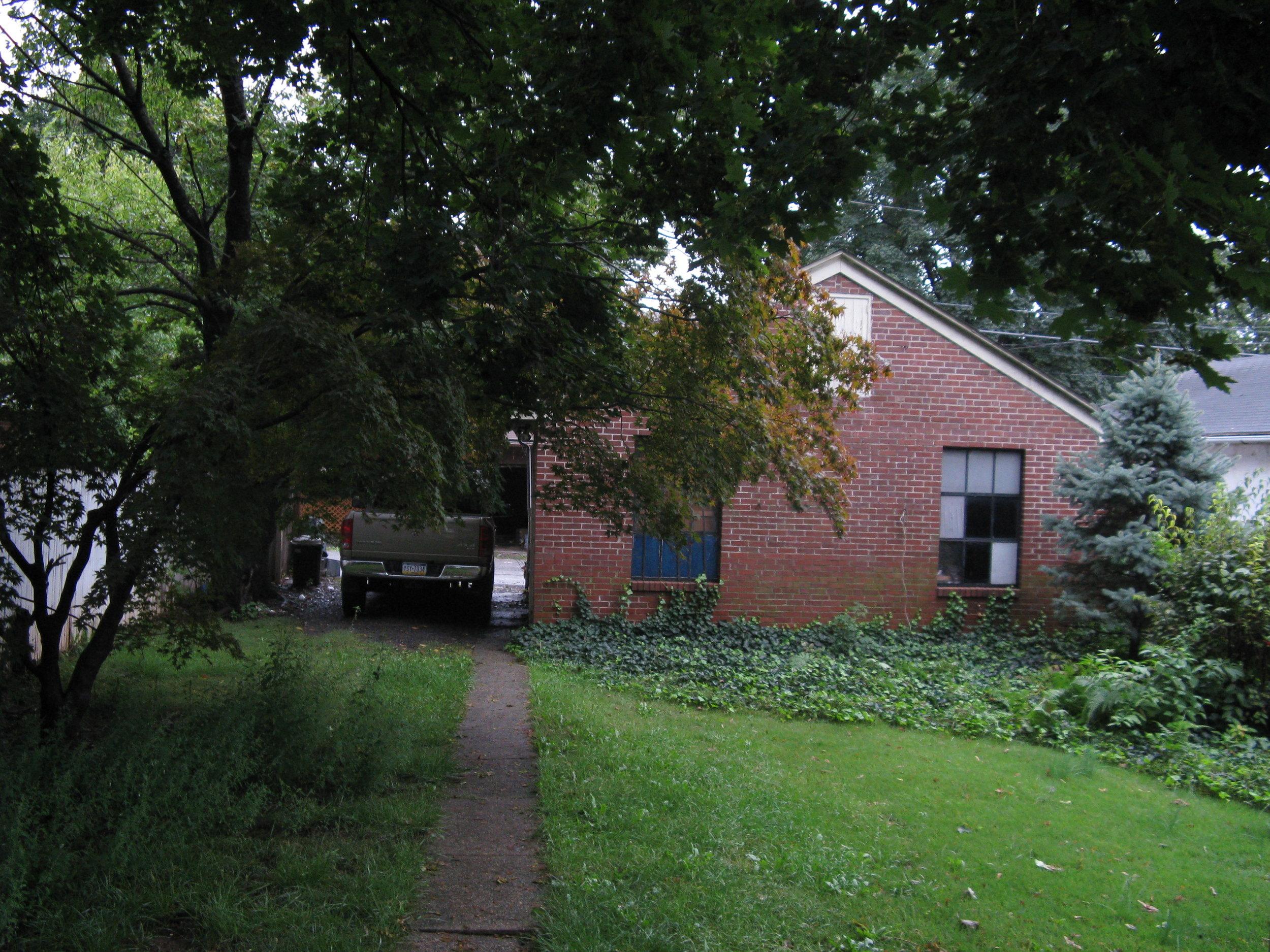 Backyard 2008.