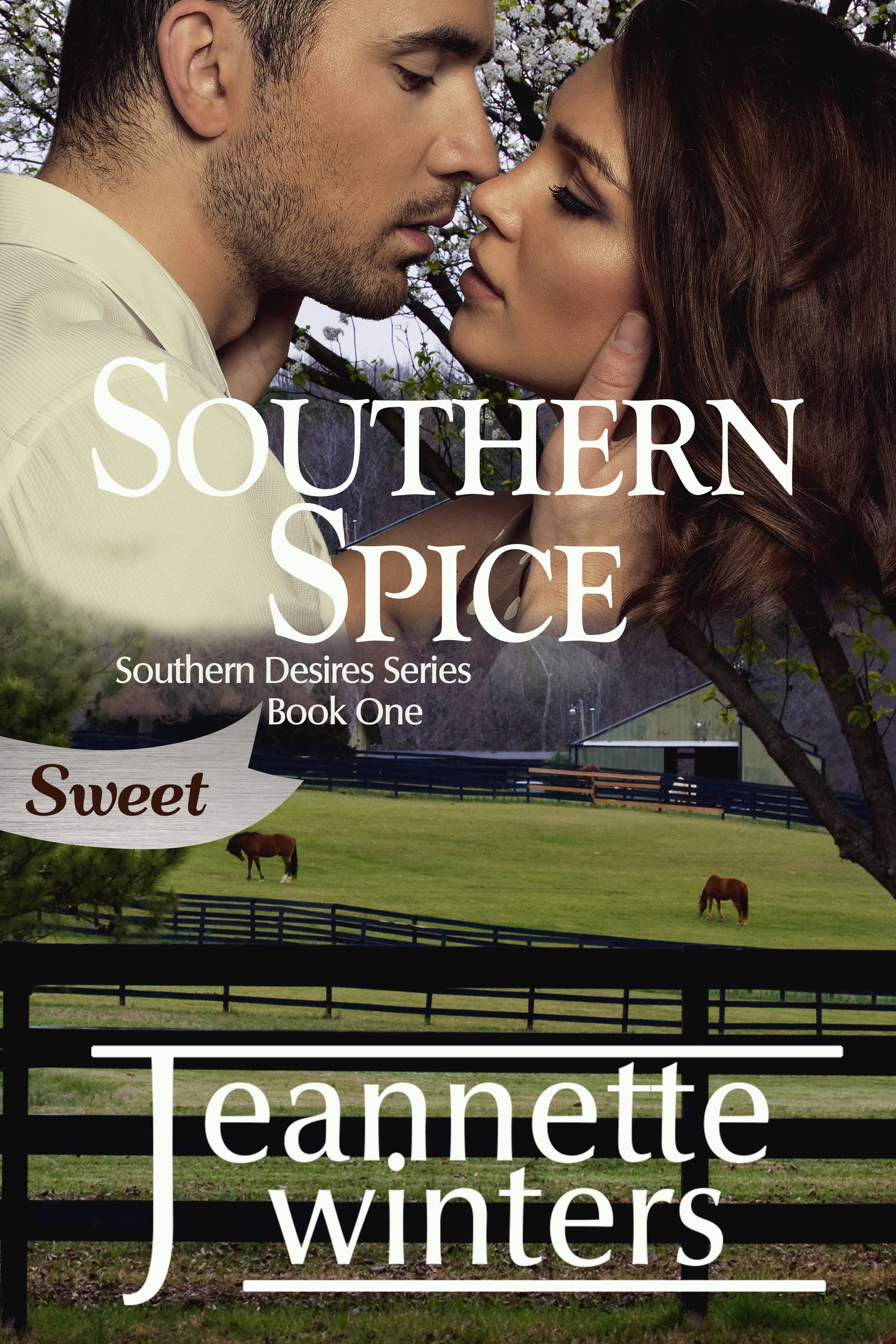 Enjoy this clean and wholesome version of Southern Spice. Same story without the spice. The Sweet version still contains adult situations and relationships. If you prefer the hotter version be sure to download the original.  Derrick Nash knows the pain of loss. But is he seeking justice or revenge? He doesn't care as long as someone pays the price.  It is Casey Collin's duty at FEMA to help those in need when a natural disaster strikes. After a tornado hits Honeywell, she finds there are more problems than just storm damage. Will she follow company procedures or her heart?  Can Derrick move forward without the answers he's been searching for? Can Casey teach him how to trust again? Or will she need to face the fact that not every story has a happy ending?