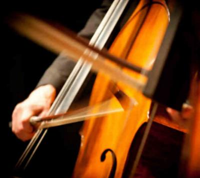 Violin0213.png
