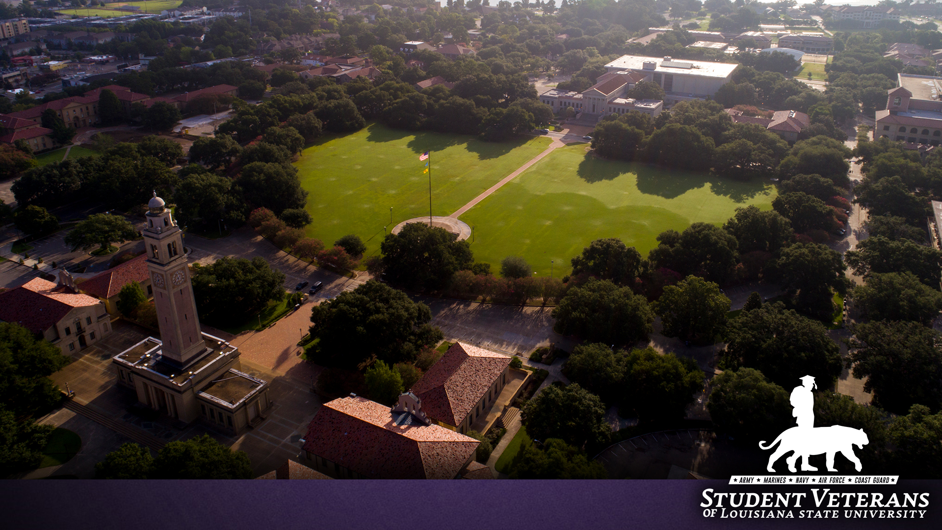 SV_LOGO_DroneShot1.jpg