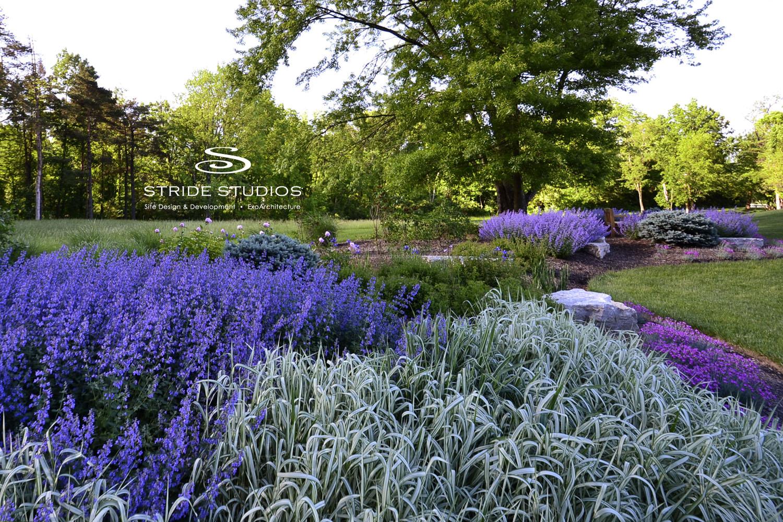10-stride-studios-purple-garden-grass.jpg