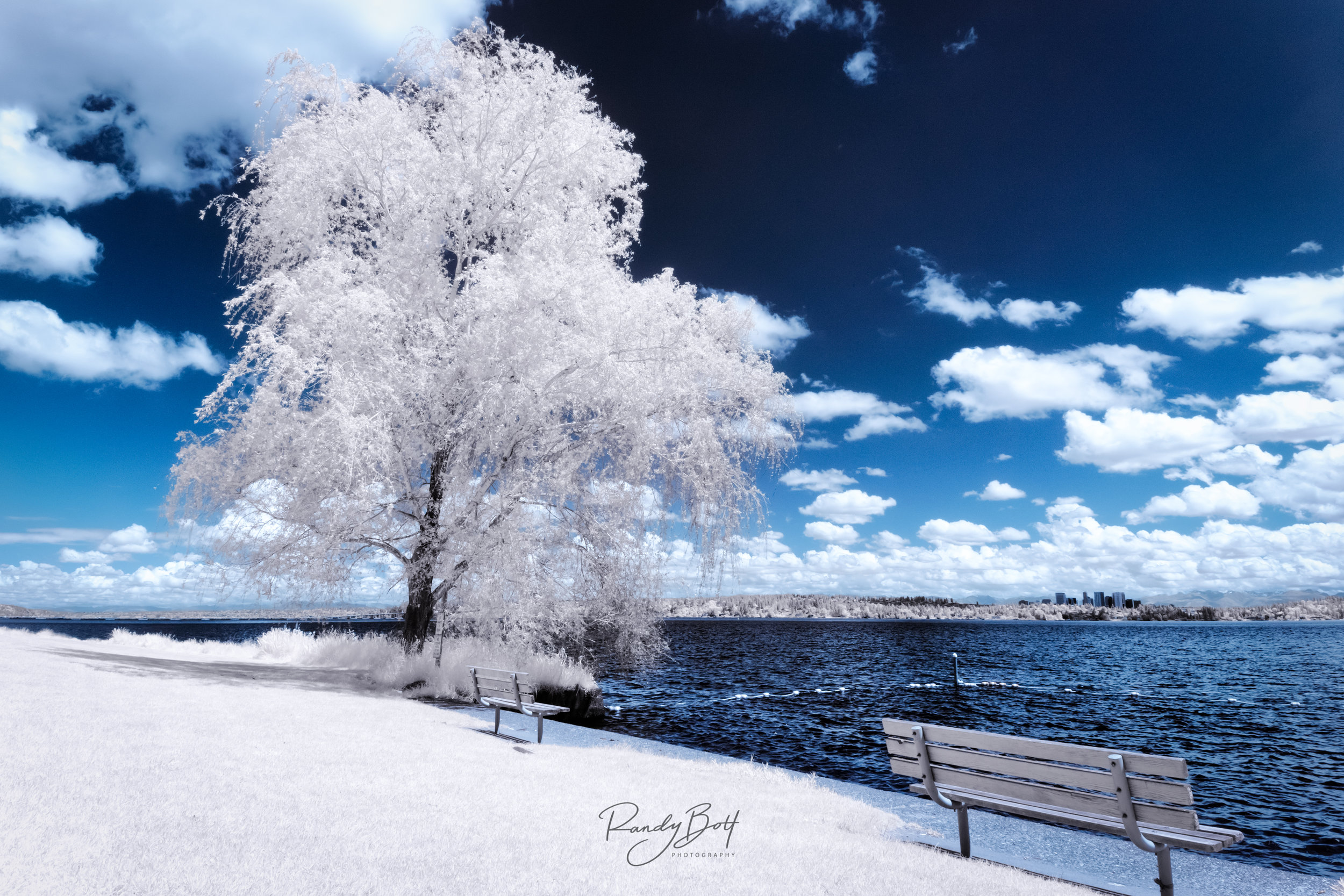 Lake Washington Infrared