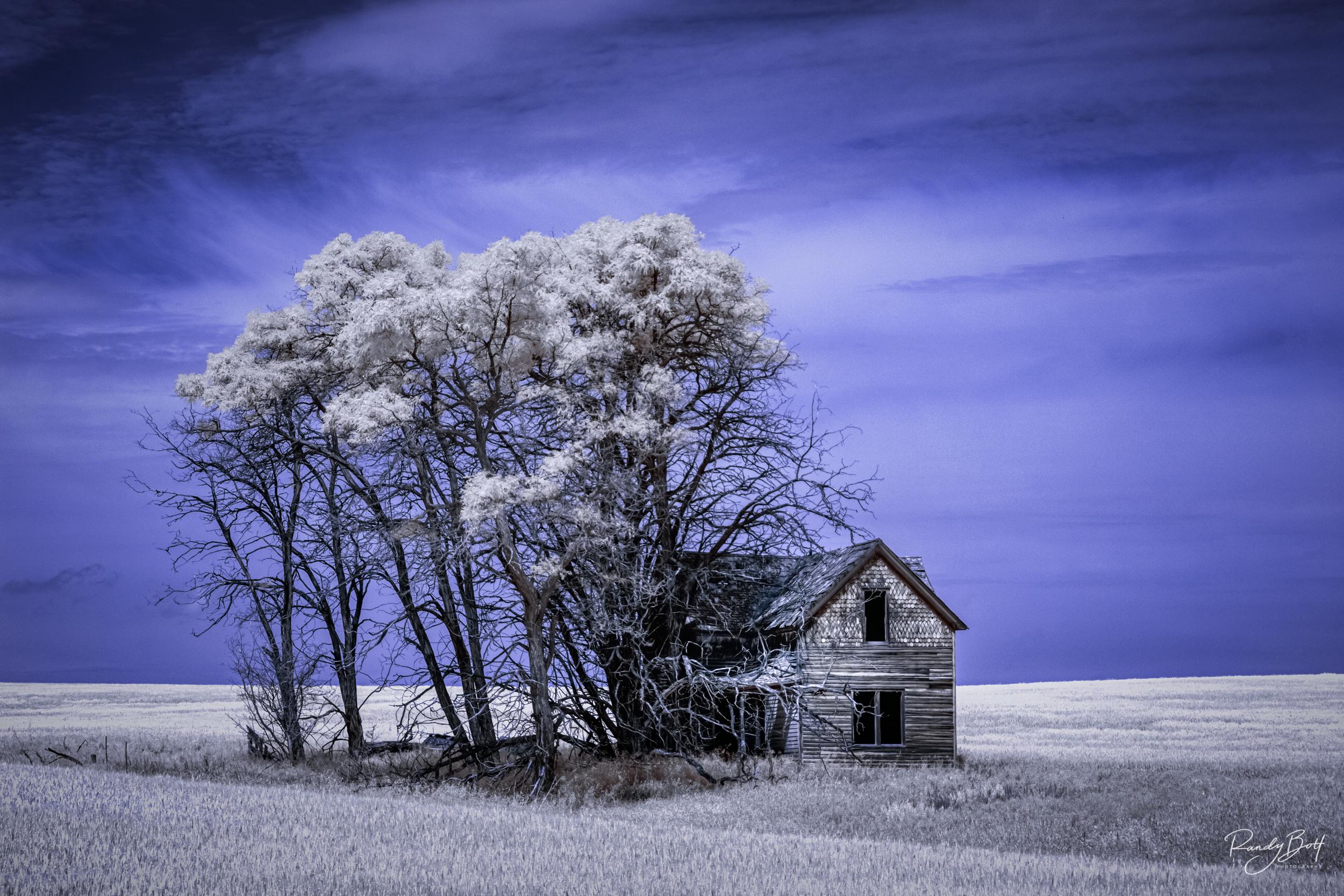 Blue Sky House.jpg
