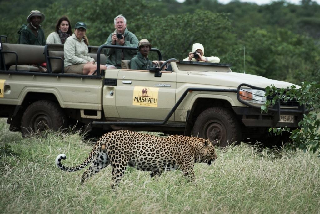 Viewing_of_Leopard_-_OE_21.jpg