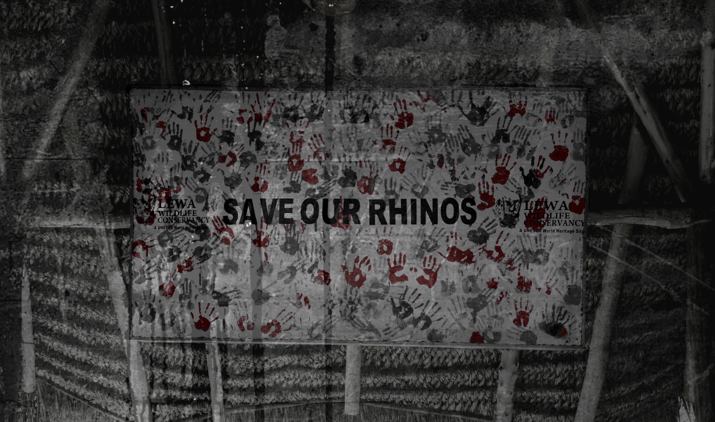 Save Rhinos slow.jpg
