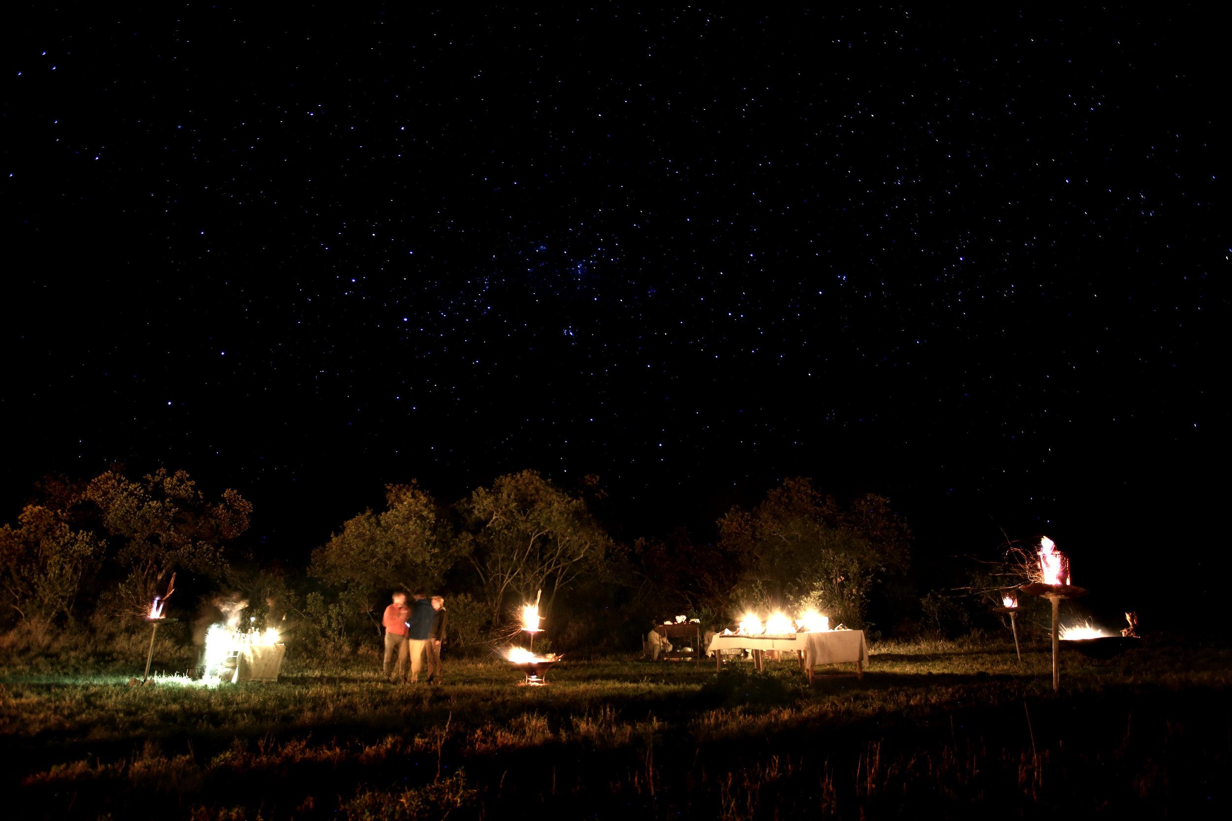 bush dinner safari colour.jpg