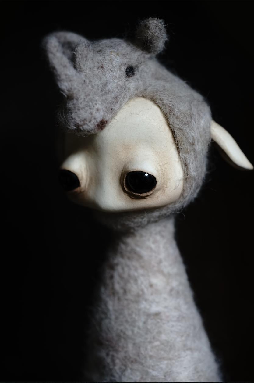 Mahlimae 'Rhino'