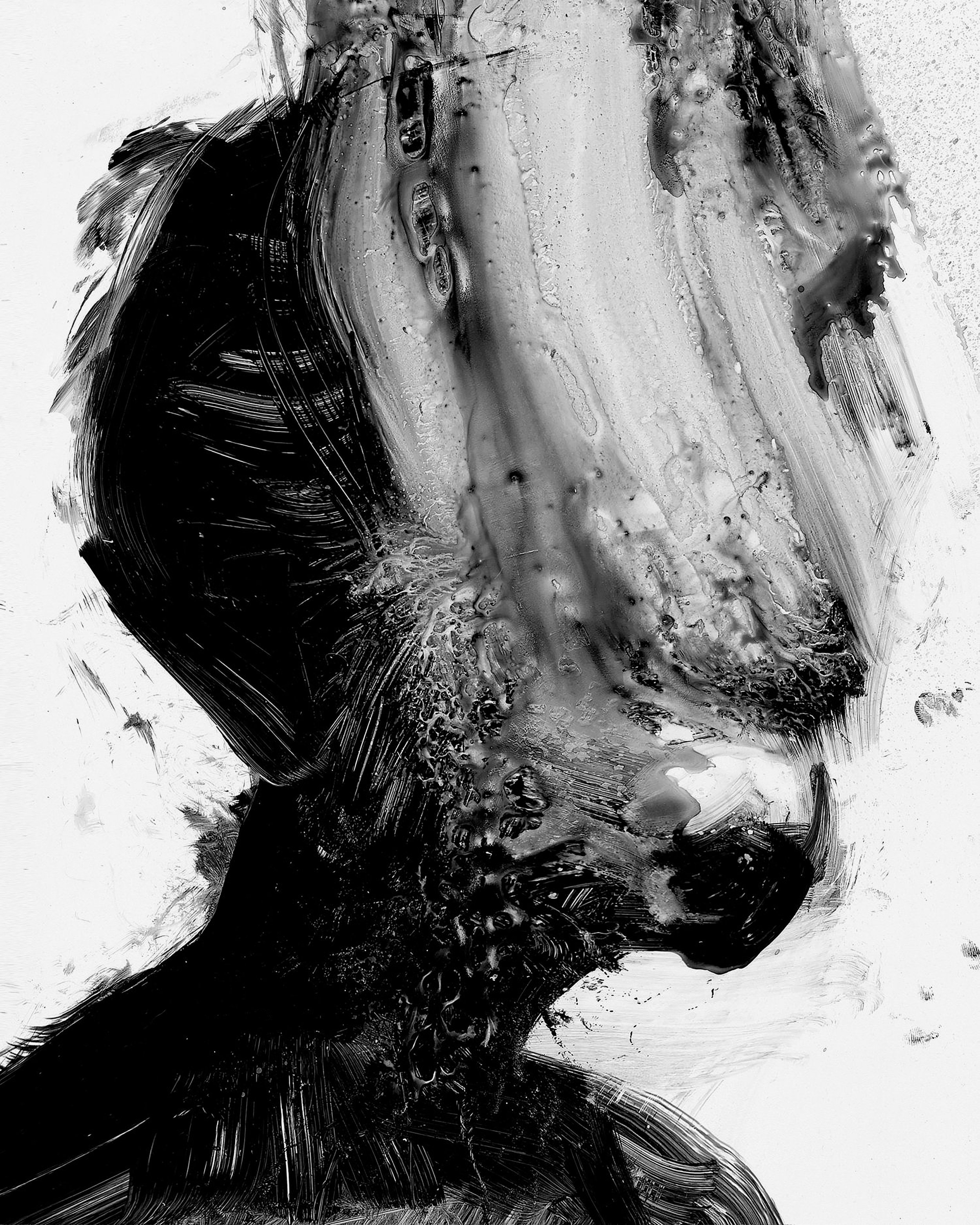 Jesse Draxler.jpg