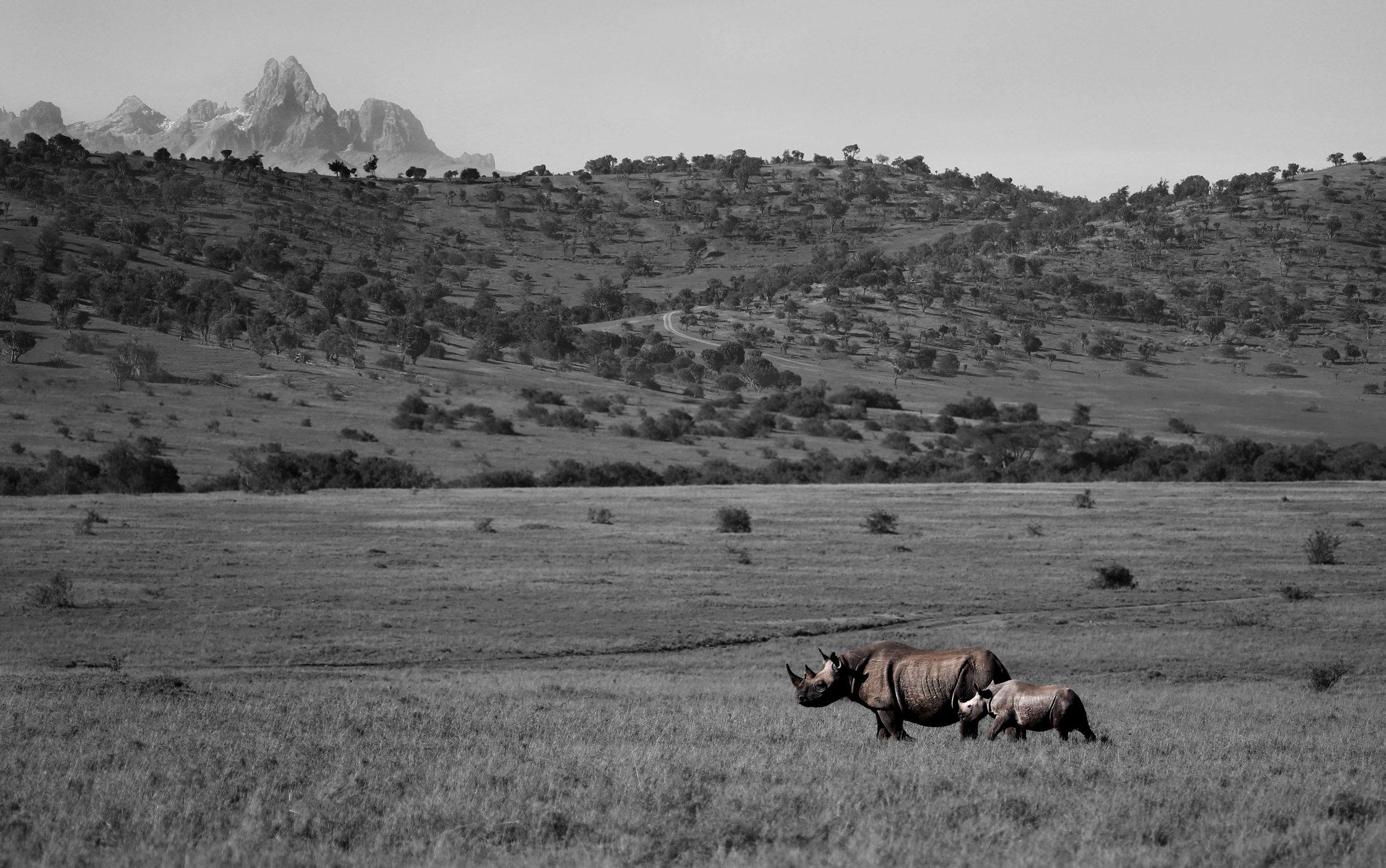 Mt Kenya BW.jpg