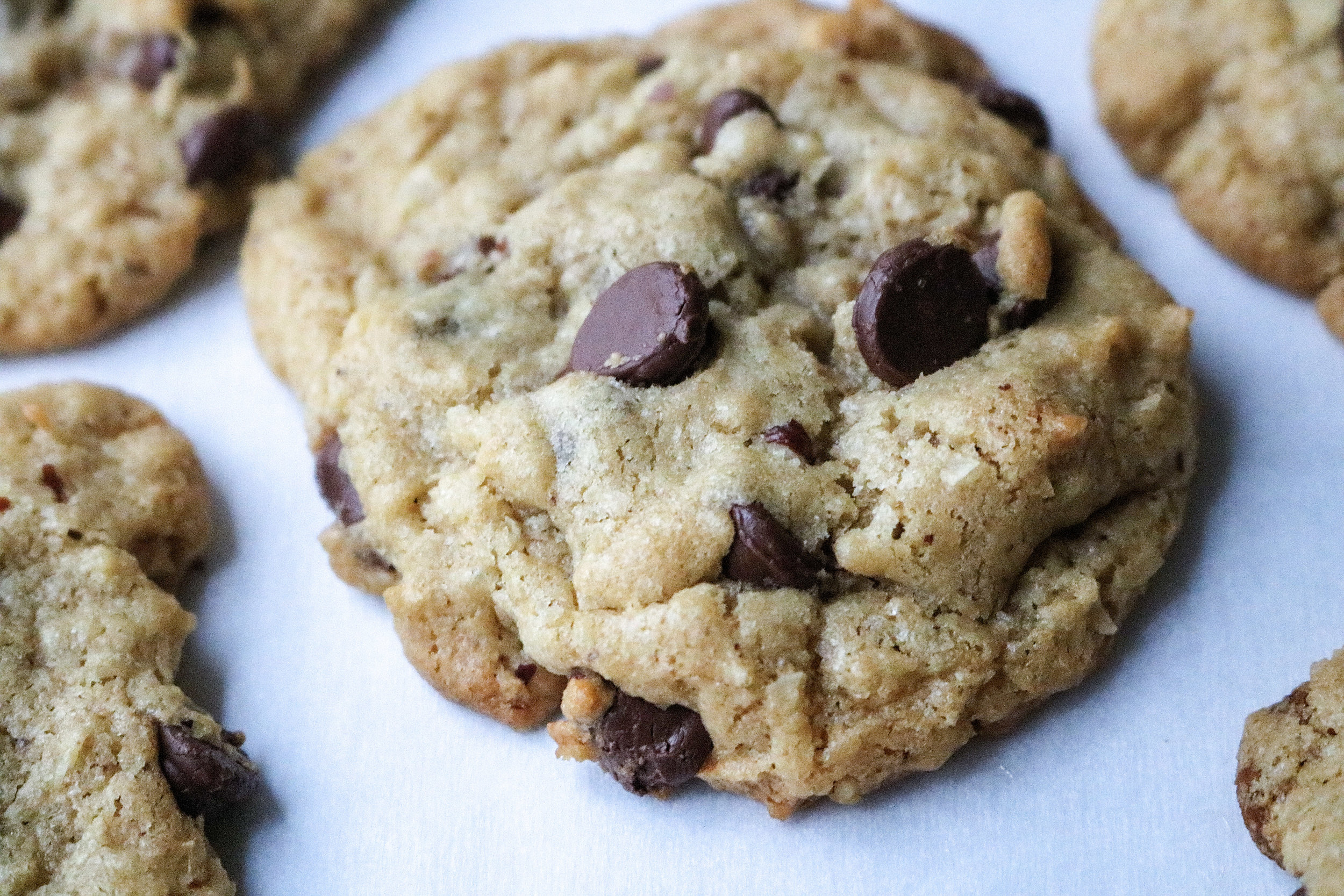Gluten Free Coconut Chocolate Chip Cookies