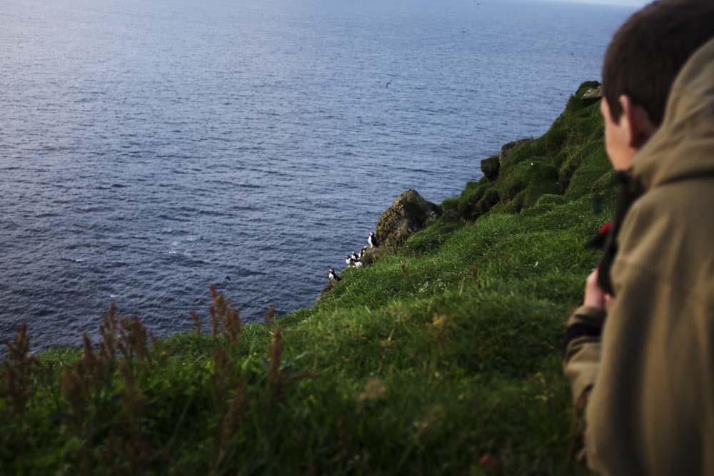 Mark watching Puffins sitting on a cliff.