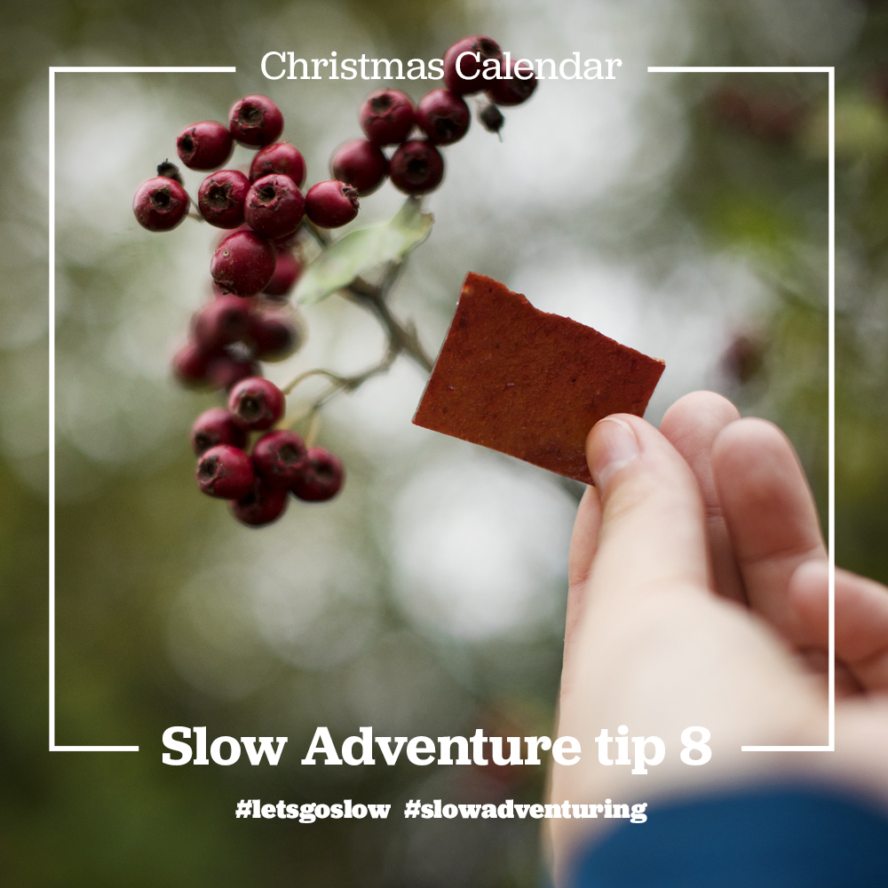 slow-adventure-tip-8-Get yo know local nature.jpg