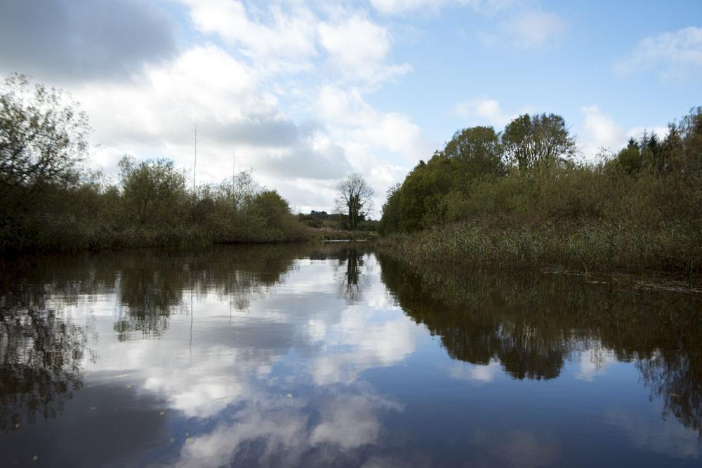 lets-go-slow-river-cottage-irelanddsc_3104-web.JPG