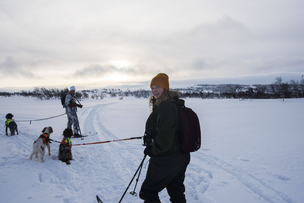 Thea skiing with Evelina's dogs