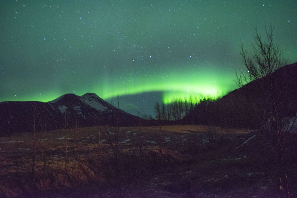 Northern Lights from the guesthouse