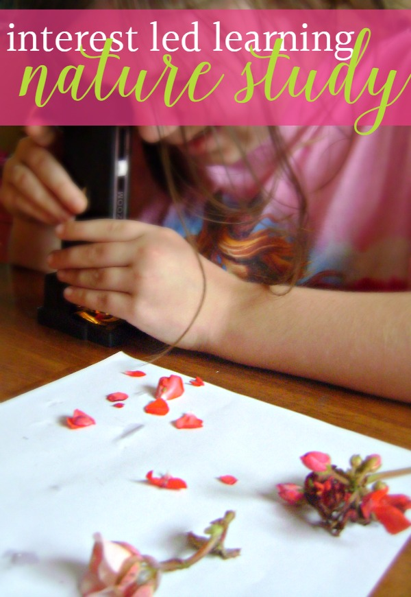 Interest led learning is a great way to learn about science. Take a look at at how we use it with nature study ideas in our homeschool.