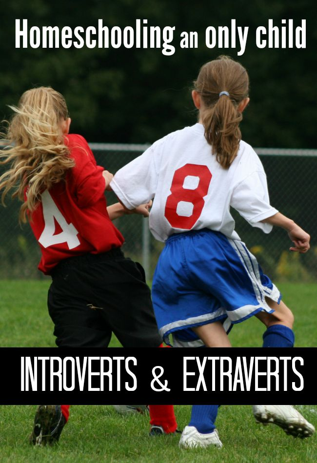 Homeschooling an only child? Introverts and extraverts have very different social needs, desires, and experiences. Here are a few tips for both.