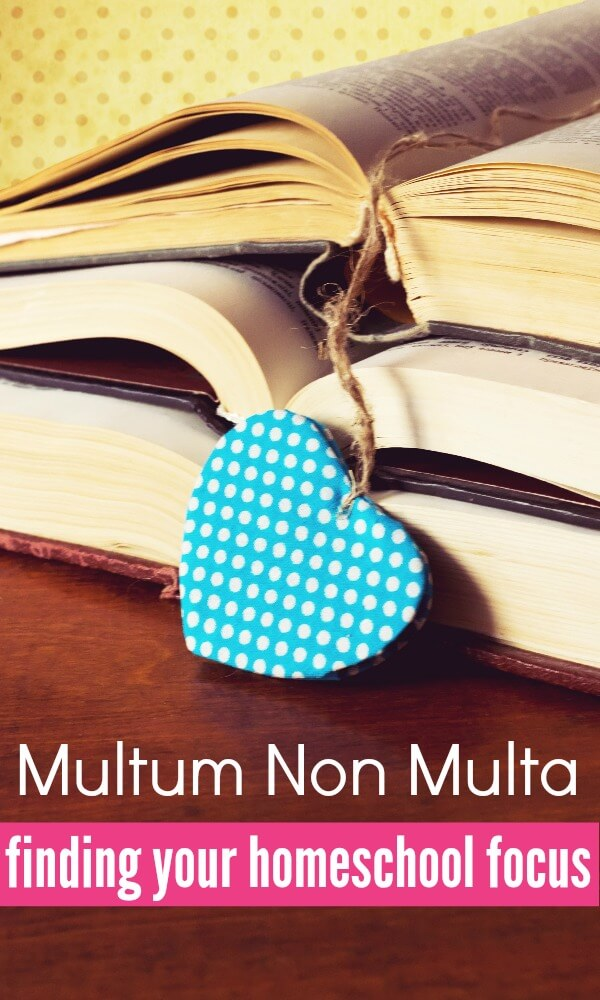 Multum Non Multa is a classical education principle that can be applied to homeschooling. By focusing on the most important homeschooling subjects you create a rich educational experience for your children.