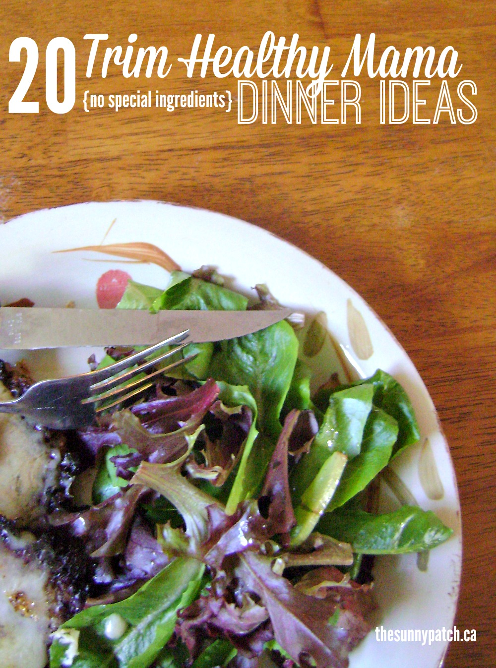 Planning a Trim Healthy Mama dinner is easy with these tips. 20 meal ideas that require no special ingredients!