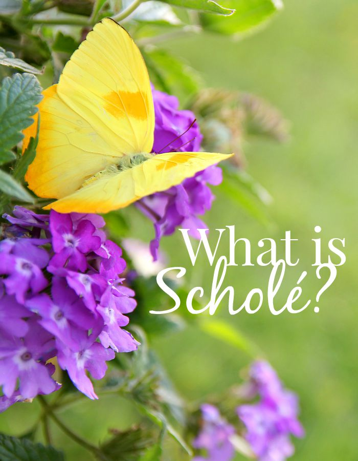 Scholé is a Greek word that means 'leisure' and the Latin word scola and English word school are both derived from this Greek word. So school = leisure. Here are 4 keys for finding the scholé in your homeschool.