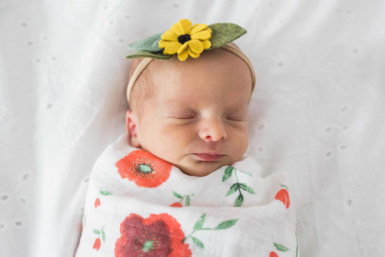 newborn_twins_photography-17.jpg