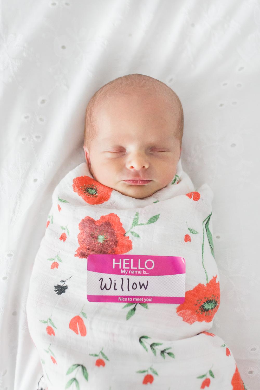 newborn_twins_photography-18.jpg