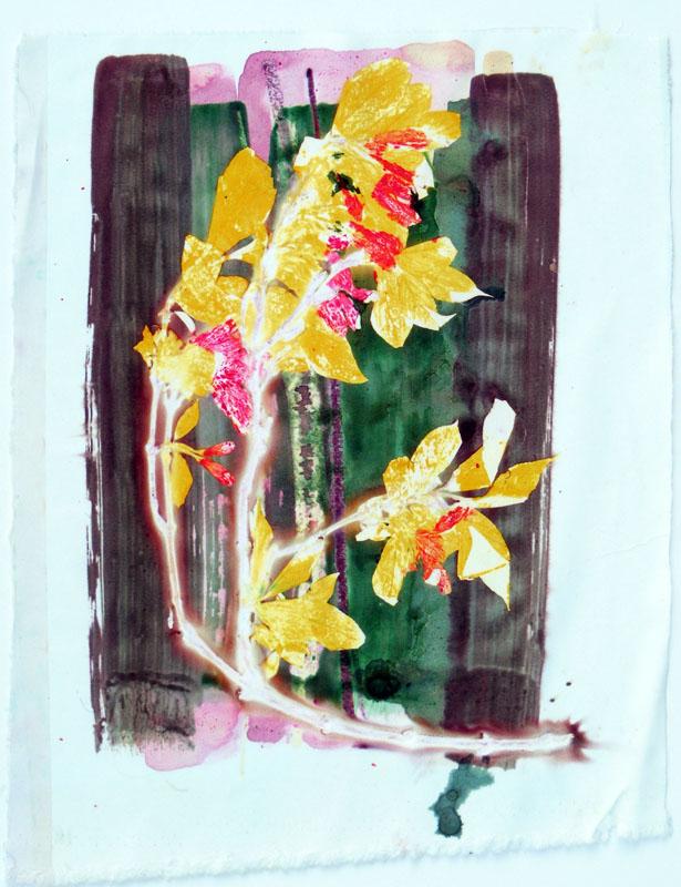 Web 17 | 24cm x 33cm Photographic Print/ Paint on Silk