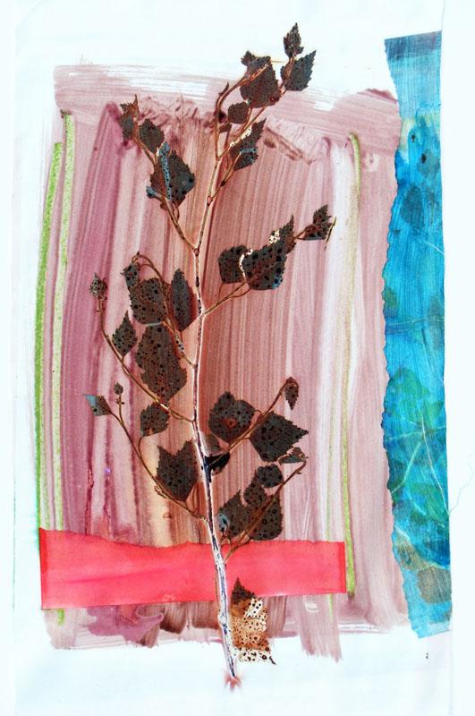 Web 27 | 30cm x 50cm Photographic Print/ Paint on Silk